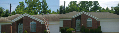 roof cleaning and Soft Washing West Bloomfield Michigan